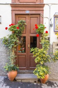 Home Cleaning Tips Tricks and Routines. Beautiful front door with with flowers pots