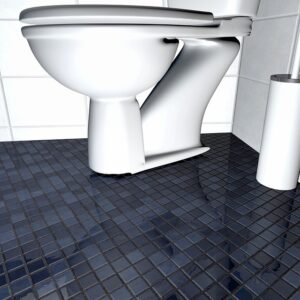 Home Cleaning Tips Tricks and Routines. A clean toilet in the bathroom