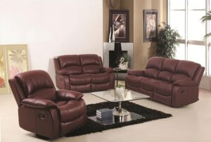 Home Cleaning Tips Tricks and Routines. Lounge with leather furniture.