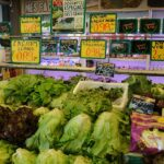 Menu Planning and Grocery Shopping,. Different kinds of lettuce on the self in the shop to choose from