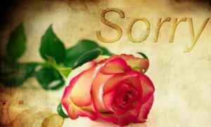 Emotional Intelligence for Good Leadership. Apologizing note with a rose