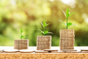 How To Build Customer Relationships, Picture-of-stacks-of-coins-growing-a-plant-on-each-level-money-